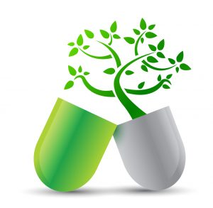 green tea leaf extract information